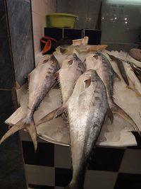 Fishmarket8