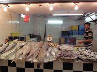 Fishmarket5